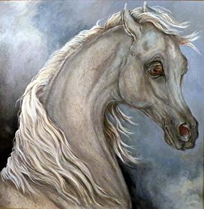 haizum-the-stallion-of-gabriel